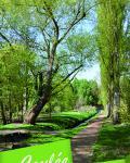 Plaquette coulée verte